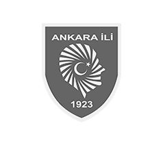 Ankara Government